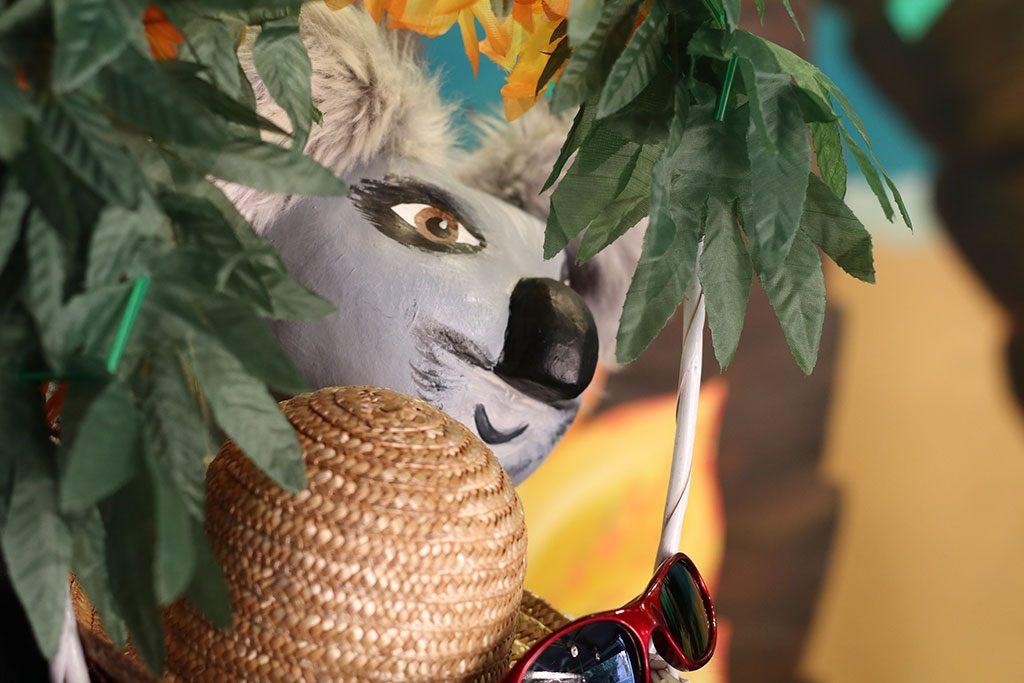 le koala dans les feuillages